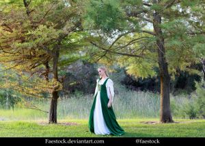 Forest maiden - Stock Model Reference 9 by faestock