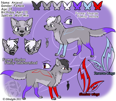 Anjeval ref sheet - 2011 by D0ra0g0n