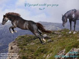 Horse Picture 4 by CocoQueenofCards