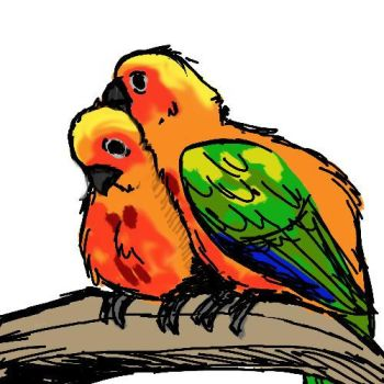 Parrots by Hobbes918