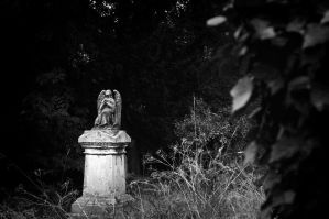 Rosary Cemetery 07 by shainarichelle