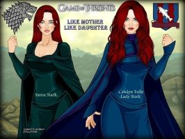 GOT Catelyn and Sansa: like mother like daughter.. by LadyRaw90