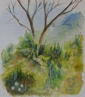 Watercolour play, trees and greenery by BecciES