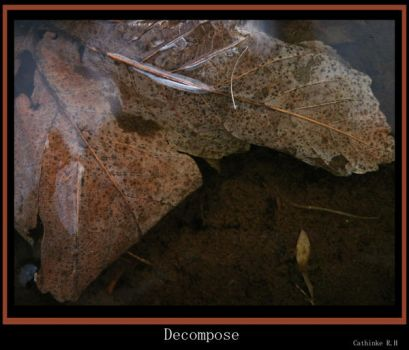 Decompose by airaquila