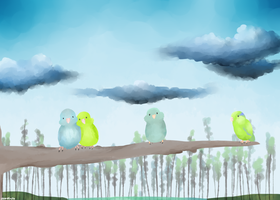 Parrotlets by NumberOnePocketNinja