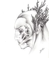 Thranduil's Beautiful Scar by TheSb13