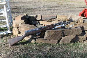 Chinese SKS by SimonovFox