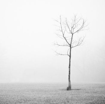 BW Nowhere by SarahVlad
