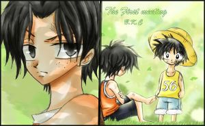 luffy and ace first meeting by bekacca
