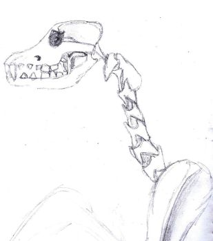 dog skull and neck by LarasSilverStars