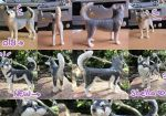 Schleich Husky (female) - Repaint by PoonieFox