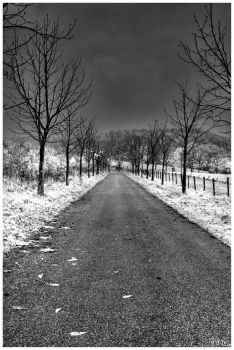 Nuclear Winter by meaningofmeaning