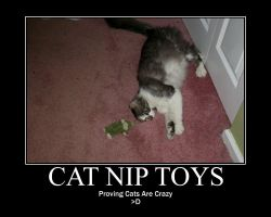 Cat Nip Toys crazy cats by AnimeKicksAss7345