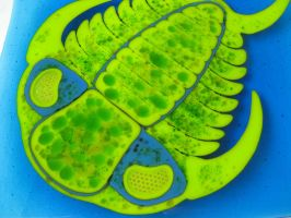 Fused Glass Trilobite Plate Genus Ceraurus by trilobiteglassworks