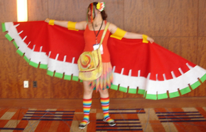 My Ho-oh cosplay for otakon 2012 by Ho-ohLover