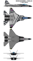 Boeing McDonnell Douglas F-25C Eagle by bagera3005