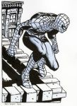 Spider-Man Commision02... 85 dollars by Raffaele-Ienco