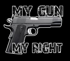 My Gun My Right by Tyger-graphics