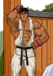 Cute Ryu by Ephorox