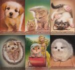 Cute as a button Card set by huy-truong