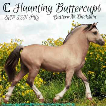 Haunting Buttercups by Exo-Exo