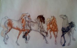 Three spanish fillies and a colt by IberianWarmblood