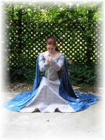 Sapphire Medieval Gown by Liquidfire3