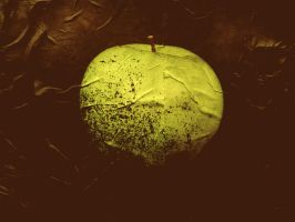 It was once a healthy apple by omamah
