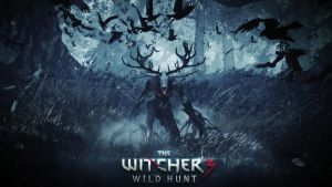 The Witcher 3 Wild Hunt by vgwallpapers