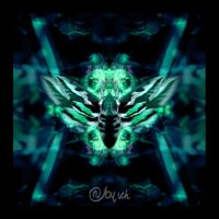 butterfly collection 28 by abylick