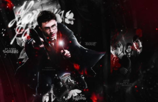 harry potter role play search by Ricchi-com