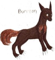 Burreon by Rose--Wolf
