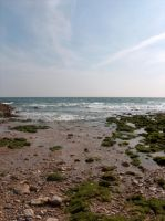 Places-Nature - Beach 5 by Stock-gallery