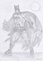 The Dark Knight by yerbouti