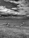 Balaton lake BW by zazoon