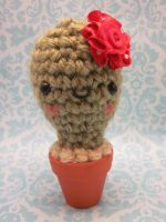 Wee Little Baby Cactus Amigurumi by Spudsstitches