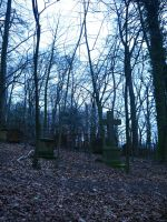 Graveyard in the forest 7 by Dragoroth-stock