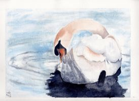 Swan by Annezon