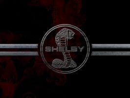 Shelby Logo by smuga