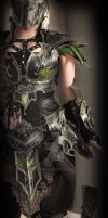 Druchii female leather armor full view by Deakath