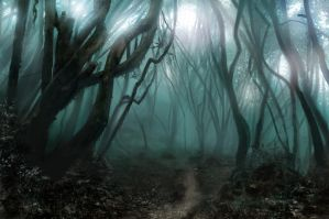 Spooky Forest Study by JRCoffronIII