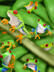 Red Eyed Tree Frogs by missimoinsane