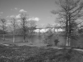 Down by the Bayou by RainStorm1991