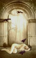 Girl guided by the crows by aAveLi