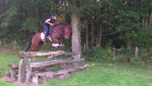 4ft Cross Country on a pony by StarCrossedPsycho