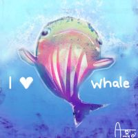 Whale by OUWU