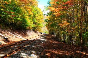 Autumn Railtrack by Celem