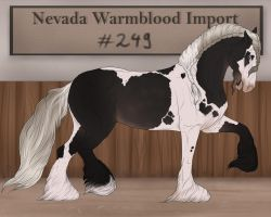 Nevada Warmblood 249 by Pashiino