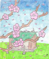 Cherryblossom Card by jhaumann