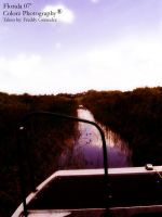 Florida Everglades part 2 by freddydubletyme